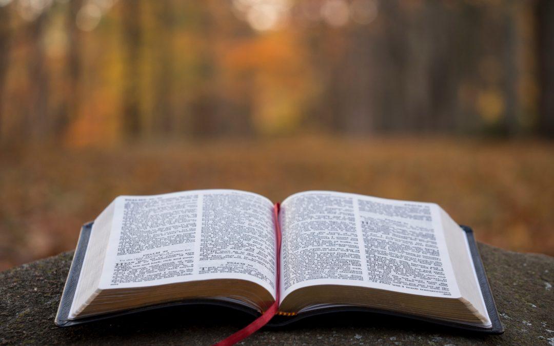2018 Bible Storying Training