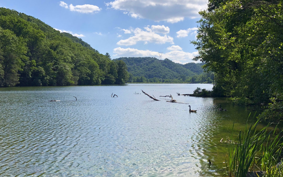 Claytor Lake Picnic 2019